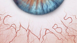 Cannabis for blindness