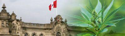 Peru Cannabis