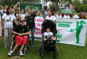 Peru Mothers protesting for access to medical cannabis
