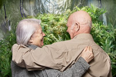 Pensioners and cannabis
