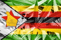 Marijuana Zimbabwe