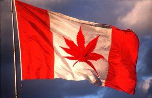 marijuana flag Canada