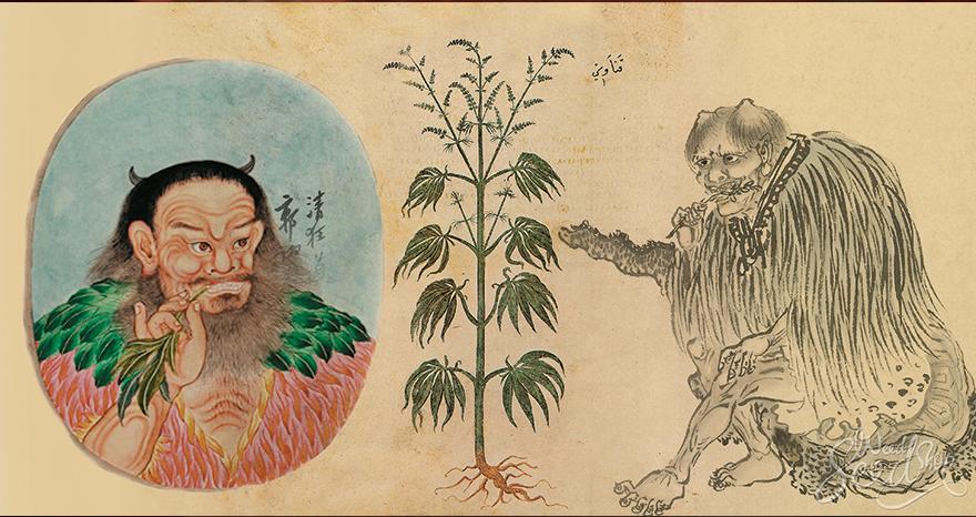 old medical marijuana image