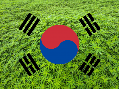 South Korean Field of Cannabis Flag