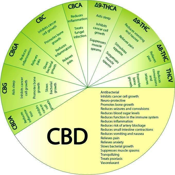 Cannabis medical chemical wheel