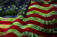Hemp American Flag