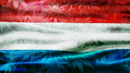 Cannabis Flag Luxembourg European Country