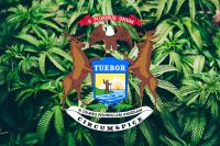 Michigan Cannabis Falg