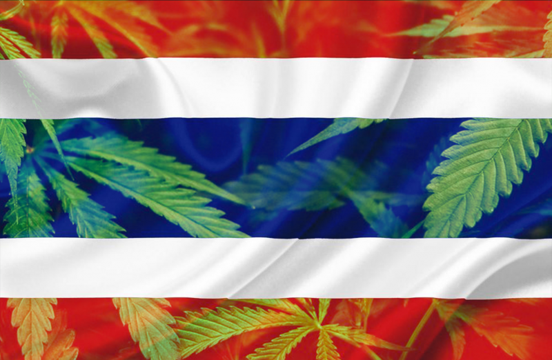 Thailand Flag with Marijuana Leaves