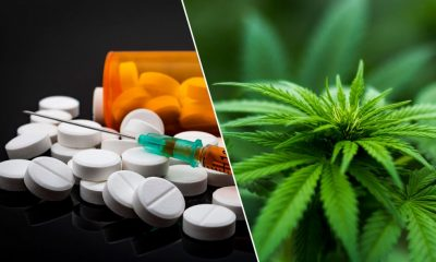 Medical Marijuana vs Pharmaceutical Prescriptions