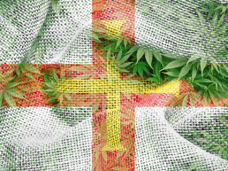 Flag of Guernsey with cannabis flags overlayed; British Island flag with cannabis