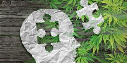 Autism medical cannabis brain image