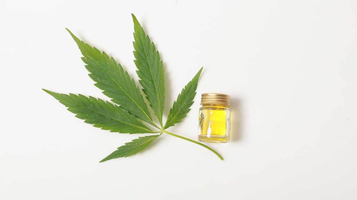 CBD medical cannabis oil next to weed leaf marijuana