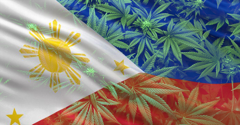 Medical cannabis legalised in Phillipines