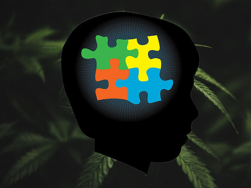 Autism Puzzle Logo on cannabis leaves background