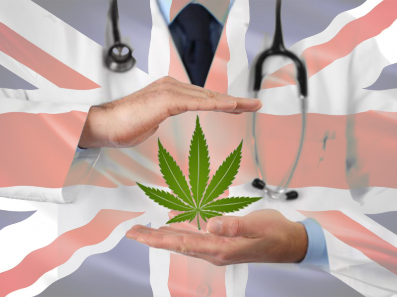 Scientist wearing white coat holding cannabis leaf on British flag background