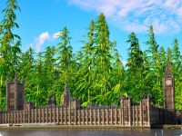 House of Parliament, Britain, Cannabis in background