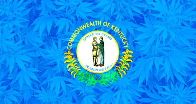 Kentucky State Flag with Cannabis background overlayed