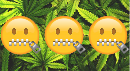 Emoji's with zipped mouth representing Tourette's on cannabis leaf background