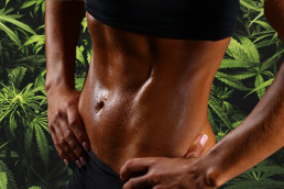 Abs on cannabis leaves