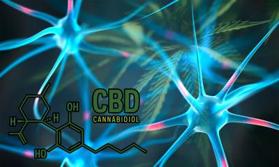 CBD molecule with CGI brain neurons on cannabis leaf background