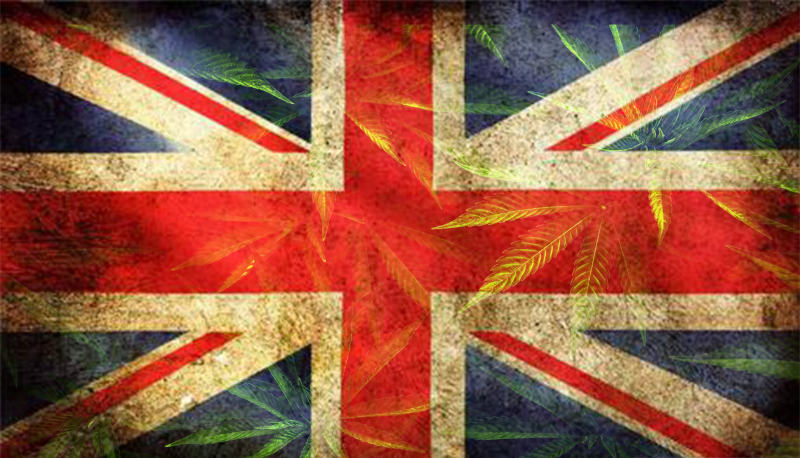 Union Jack with cannabis leaves in background