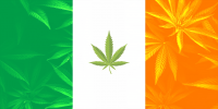 Irish Flag with cannabis icon in middle on background of cannabis leaves