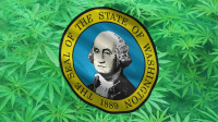 Washington State Flag with Cannabis Leaves for background