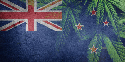 New Zealand flag looking work out with marijuana leaves in background