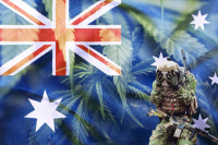 Solider suffering PTSD, hands in head, behind Australian Flag and medical cannabis