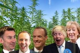 Conservative Members of Parliament, Boris Johnson, Andrea Leadsome, Matt Hancock, Dominic Raab, Jeremey Hunt, all admit they have used cannabis