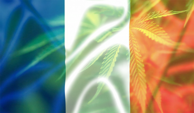 French tricolor flag with cannabis marijuana leaves