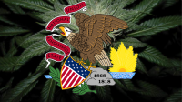 Cannabis leaves with Illinois flag over the top