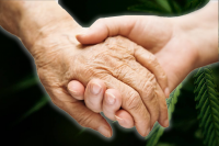 elderly couple holding hands representing hospice care; hands held over cannabis leaves