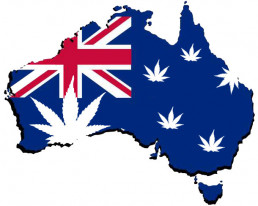 map of Australia with cannabis leaves