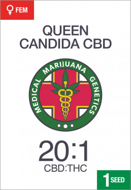 pack-queen-candida-cbd-2